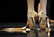 Ballet Nacional de Cuba en La Habana