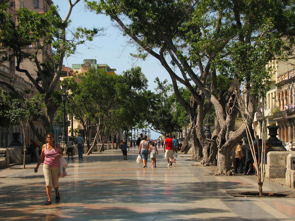 Paseo-del-Prado-wallpaper