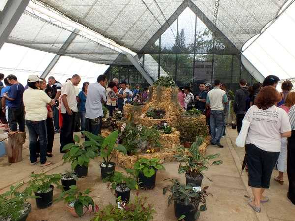 havana-live-festivaldeplantas-jardinbotanico-footoabelrojas