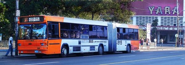 havana-live-omnibus