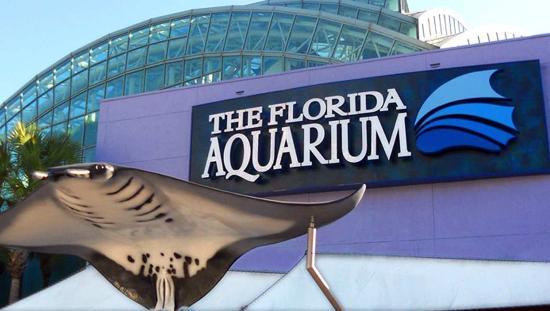 havana-live-tampa-florida-aquarium