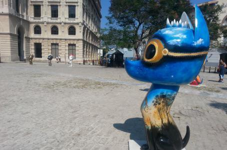 havana-live-Xico--el-xoloizcuintle-m-s-famoso--se-filtra-en-La-Habana-shaune-Fraser-campeon-panamericano-natacion