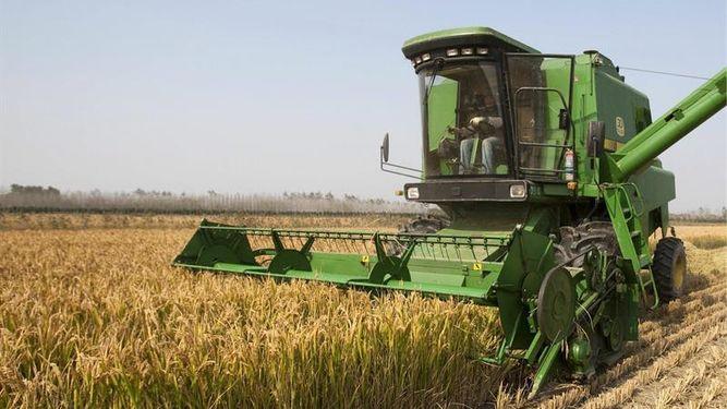 havana-live-Cuba-Francia-Habana-cooperacion-agricultura_890621278_8750851_667x375
