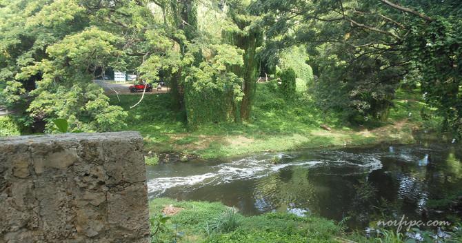 havana-live-parque-almendares-vista-rio