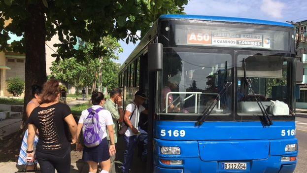 Bus_CYMIMA20160907_0006_13