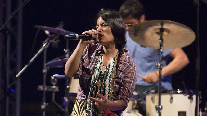 musicos-chile-argentina-costa-festival_973112953_13064710_667x375