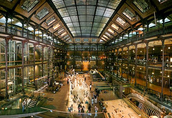havana-live-nacional-museo-natural-historia-paris