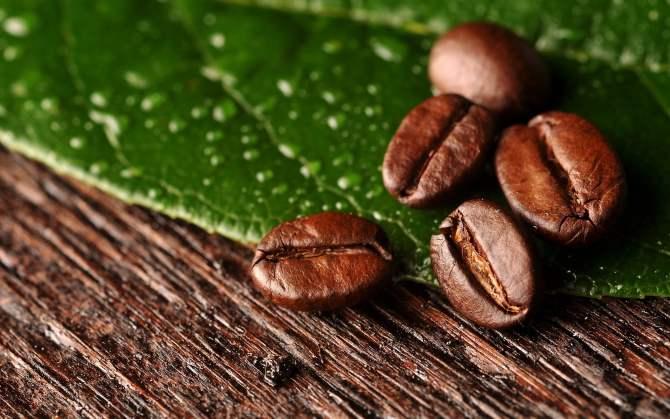 El aumento de los precios del café revive las montañas del este de Cuba