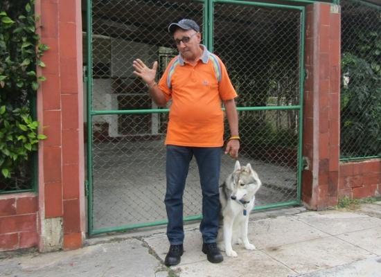 Entrenadores de animales,