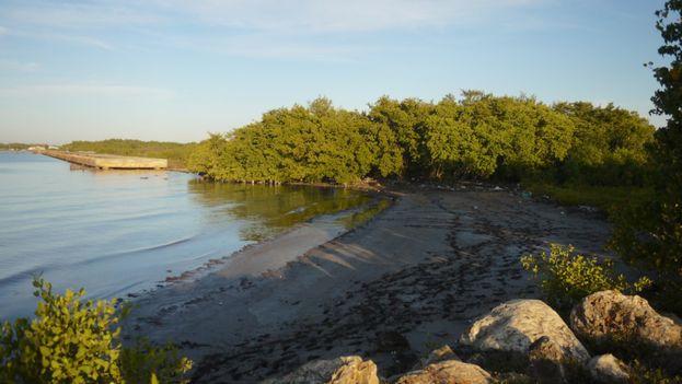 El mar Caribe penetra en el centro sur de Cuba a razón de 1,3 metros anuales
