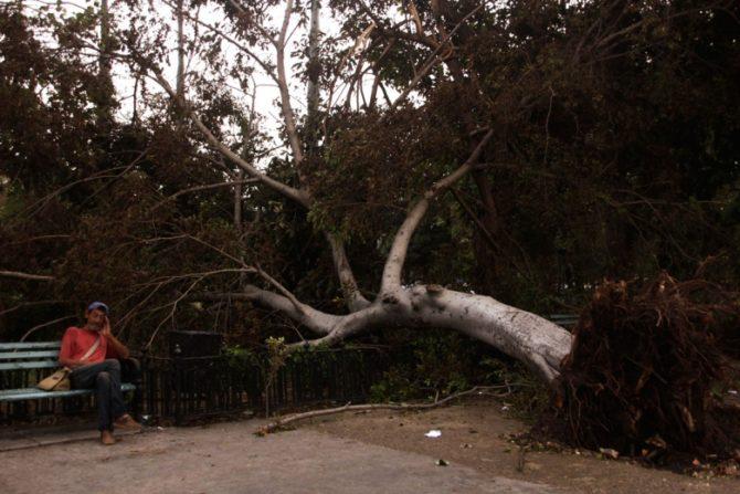 Más de 4.200 viviendas sufren daños en La Habana, 157 son derrumbes totales