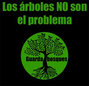 Trees Are NOT the Problem