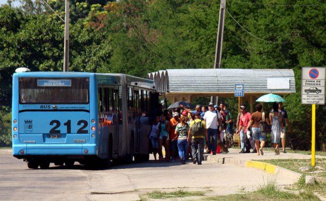 A partir de este lunes nueva servicio'expreso' entre Alamar y el Vedado