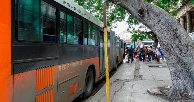 Conversaciones mientras esperas la guagua en La Habana