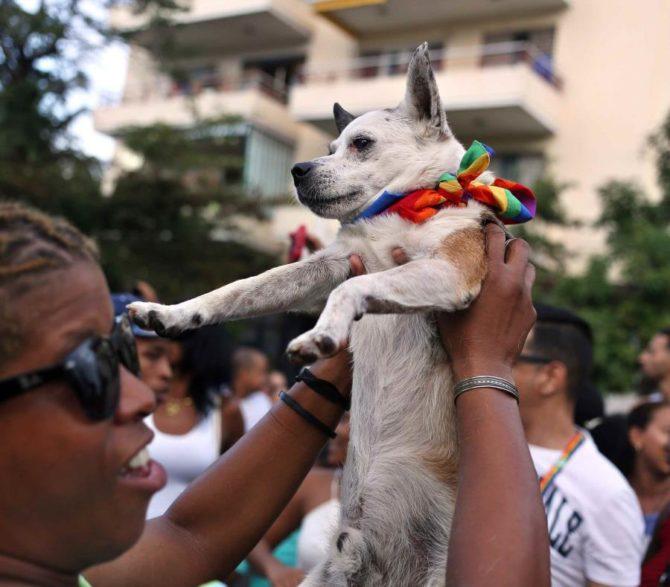 Parada gay detiene el tráfico y pone a bailar a La Habana