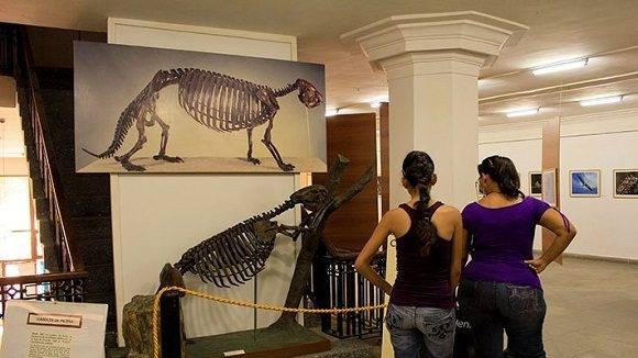 El Museo Nacional de Historia Natural (MNHN) inauguró en su sede de La Habana Vieja, su programación especial de verano que se extenderá hasta el 30 de agosto.