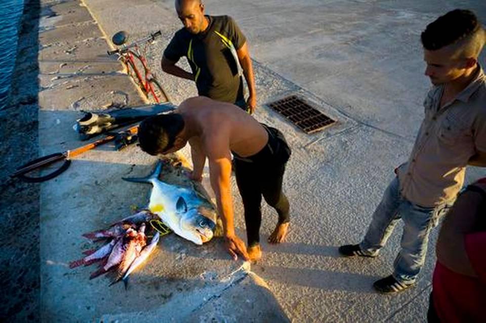 726cuba-condom-fishing