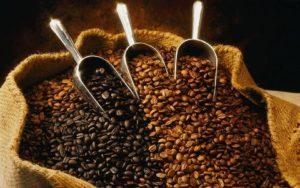 Cuba promotes organic coffee production