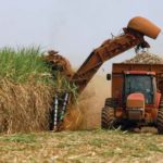 Cuban sugar harvest one of lowest in 120 years, exports met