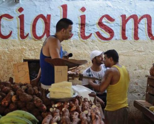 En Cuba se pierde hasta el 25% de los productos agrícolas, opinan expertos