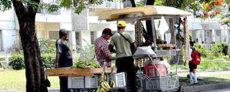 Gobierno de La Habana fija precios máximos de venta de productos agropecuarios