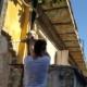 Rescatan a una perra abandonada en un edificio en peligro de derrumbe de Centro Habana