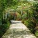 Cuba y EEUU cooperarán en la conservación de la flora y jardines botánicos