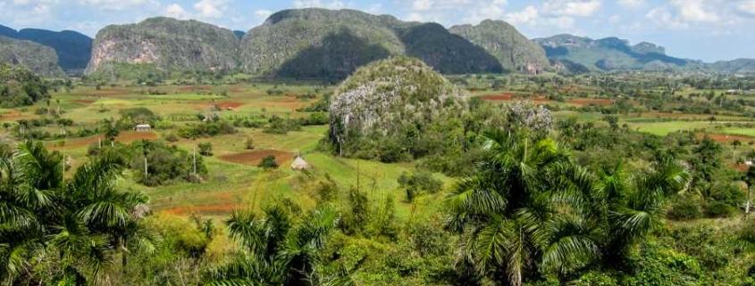 """Cuba se une al """"Desafío de Bonn"""", la principal iniciativa de restauración forestal del mundo"""