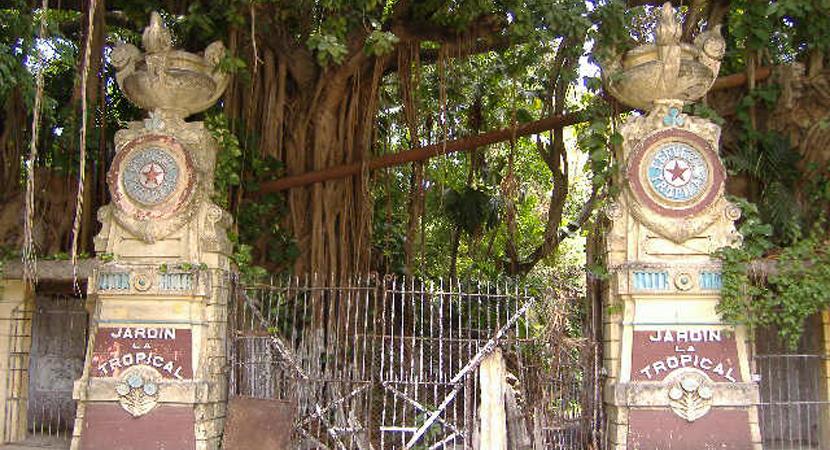 Reabrirán en julio los Jardines de La Tropical