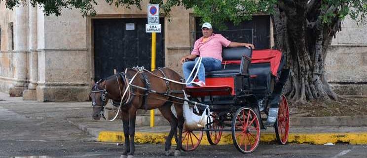 Los conductores de los carros tirados por caballos en la Habana Vieja dicen que comienzan a sufrir las sanciones