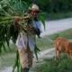 «Une situation économique complexe» sur l'île