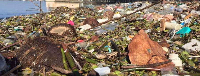 Alarma por vertedero de desperdicios en la bahía de Cienfuegos