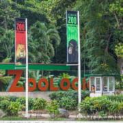 El Zoológico Nacional de Cuba cierra el resto de septiembre