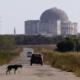"""Rusia dispuesta a """"ser socio estratégico de Cuba"""" en industria de energía nuclear"""
