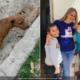 Familia cubana rescata a perra callejera que fue atropellada en La Habana