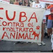 Cancelan marcha animalista en La Habana por temor al coronavirus