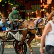 Coronavirus oblige, l'odyssée des Cubains pour chercher à manger