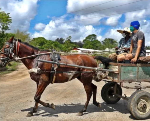 Fourth day without deaths from COVID-19 in Cuba