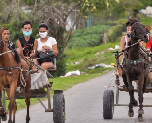 """Cuban President Miguel Diaz-Canel has declared the coronavirus pandemic """"under control"""" after the island nation registered an eighth straight day without a death from COVID-19."""