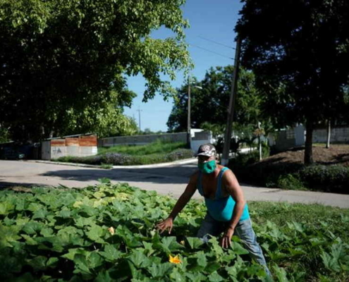 Cuba calls on citizens to grow more of their own food