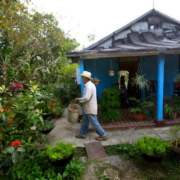 Urban gardening takes deeper root in Cuba amid pandemic