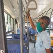Estable el servicio de transporte en Habana Vieja