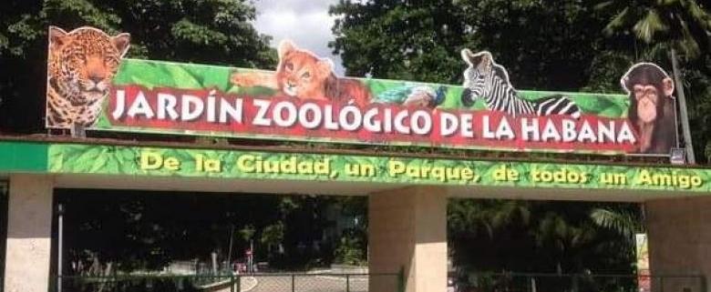 Anuncia Jardín Zoológico de La Habana plan de verano