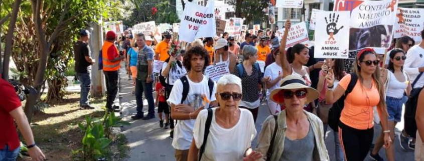 Prevén aprobación en febrero de Decreto Ley de Bienestar Animal en Cuba