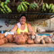 Cuba loosens state monopoly on food sales amid crisis