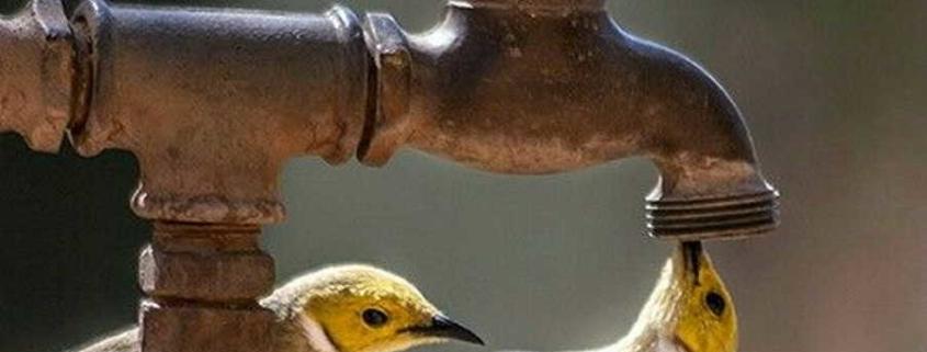 Faltará el agua el próximo miércoles en zonas del este de La Habana