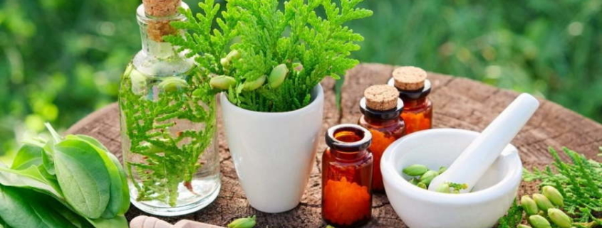 Cuba will strengthen research in Natural and Traditional Medicine