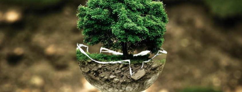 Cuba y Alemania cuentan con plataforma de desarrollo medioambiental