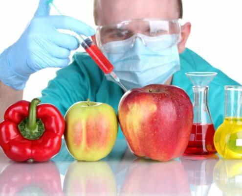 Cuba readies regulatory laboratory for transgenic foods