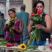 Cuba ouvre son économie au secteur privé